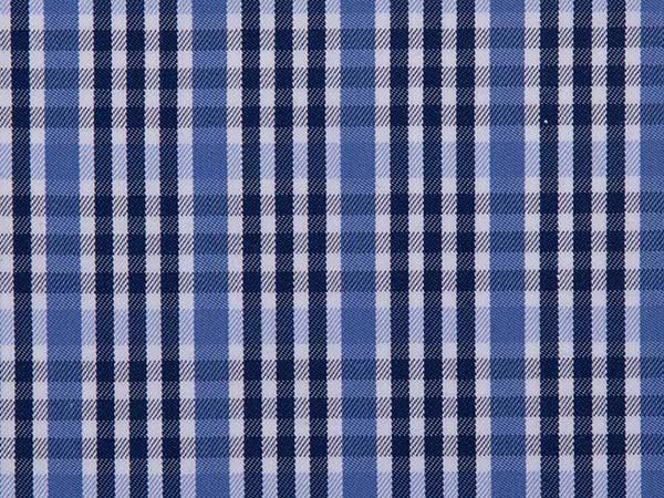 1_509-1 Blue