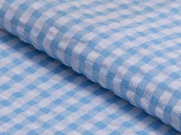2_SS-10 Light Blue Checks